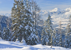 winter-austria-reference-th